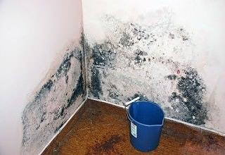 Как удалить сырость на стенах
