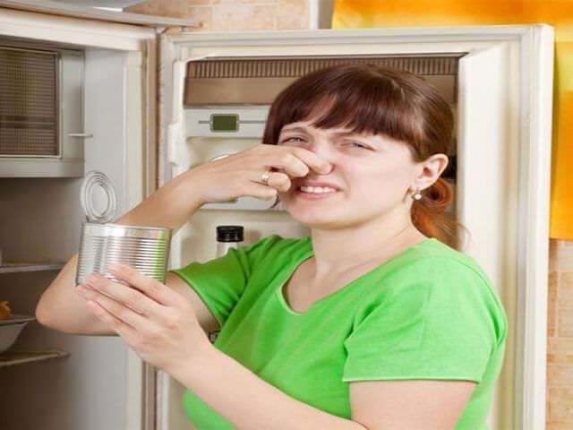 в холодильнике плесень