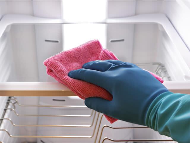 методы профилактики плесени в холодильнике