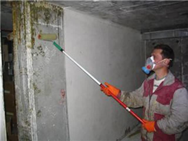 Профилактика против плесени в подвале